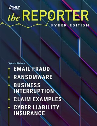 The Reporter Cyber Edition 2020