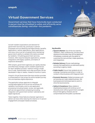 Solution Brief: Virtual Government Services Application