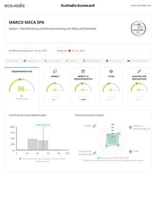 Beispiel der EcoVadis-Scorecard