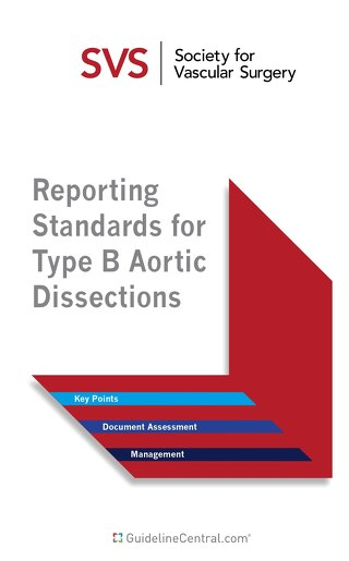 Reporting Standards for Type B Aortic Dissections