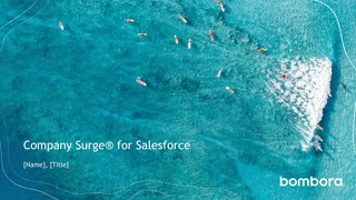 Company Surge for Salesforce Integration Overview Deck