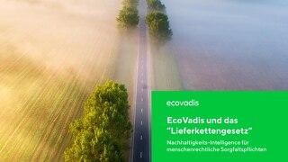 """EcoVadis und das """"Lieferkettengesetz"""""""