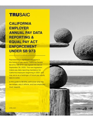 White Paper on California Annual Pay Data Reporting