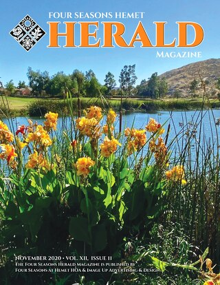 Four Seasons Hemet Herald November 2020