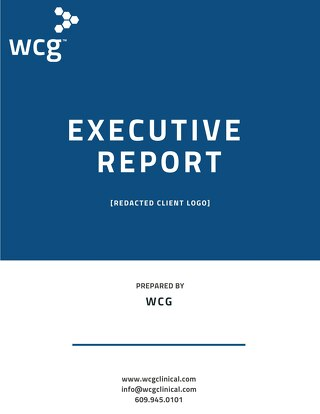 WCG Financial Audit Case Study