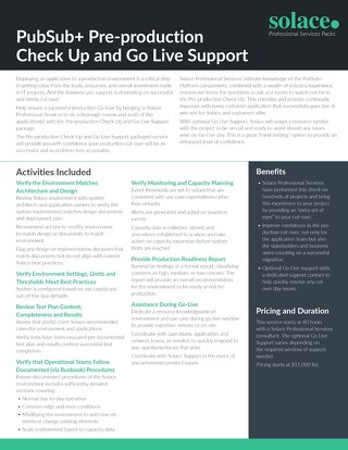 Pre-Production Checkup and Go Live Support | Professional Services