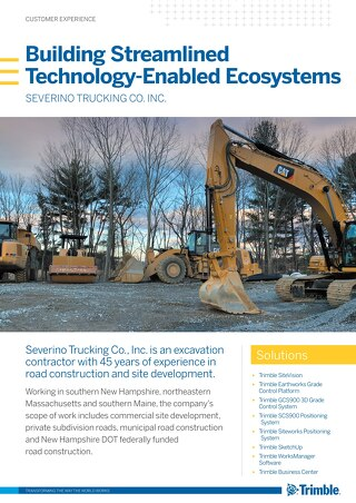 Building Streamlined Technology-Enabled Ecosystems   Severino