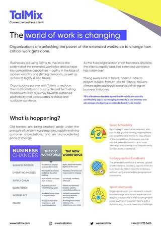 Talmix - Unlocking the Extended Workforce