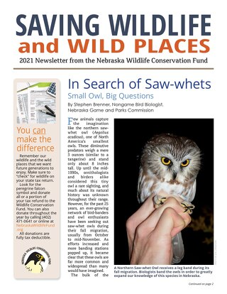 2021 Wildlife Newsletter