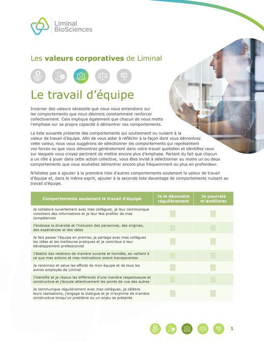 Liminal Teamwork Checklist (French)