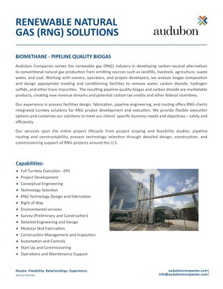 Renewable Natural Gas (RNG) Solutions