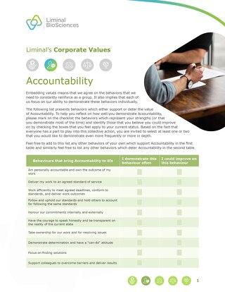 Liminal Accountability Checklist (EN)
