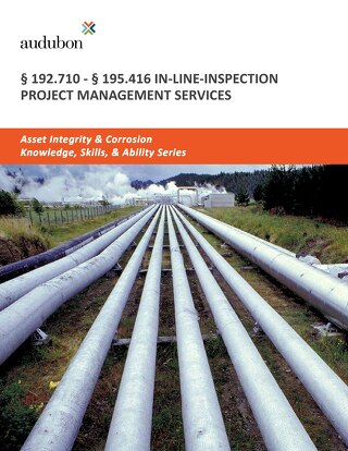 192.710-195.416 In-Line-Inspection Project Management Services