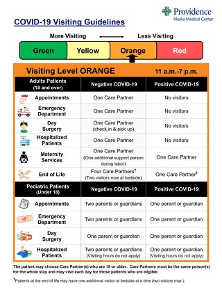 Visitation Guidelines Level Orange