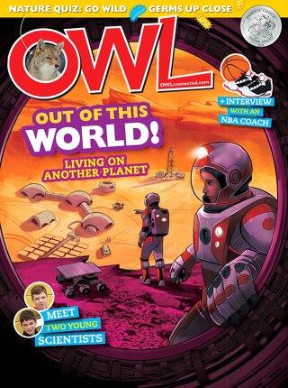 OWL - November 2020