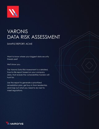 Sample Data Risk Assessment Report
