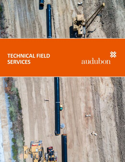 Field Technical Services