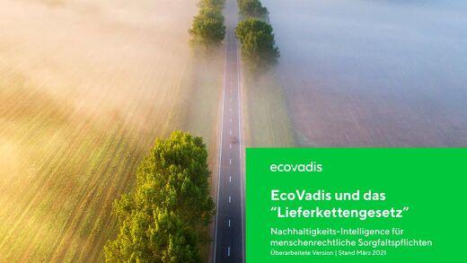 EcoVadis und das Lieferkettengesetz   Neuerungen 2021