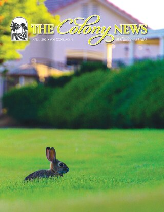 The Colony News April 2021