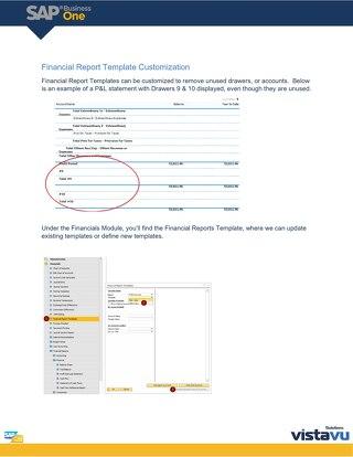 Financial Report Customization | SAP Business One