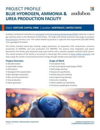 Blue Hydrogen, Ammonia and Urea Production Facility