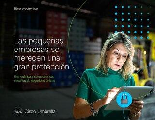 Las pequeñas empresas se merecen una gran protección