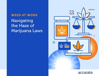 eBook: Navigating the Haze of Marijuana Laws
