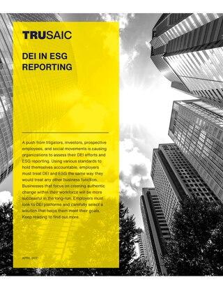 DEI in ESG Reporting White Paper