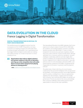 Data's Evolution in the Cloud: France Lagging in Digital Transformation
