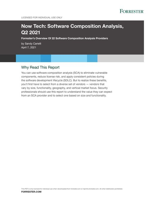 Now Tech: Software Composition Analysis, Q2 2021