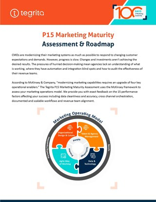 P15 Marketing Maturity Assessment & Roadmap