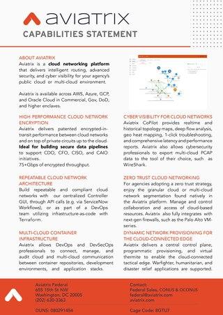 Aviatrix Federal - Capabilities Statement
