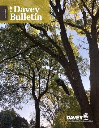 Davey Bulletin May-June 2021