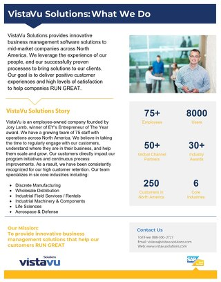 VistaVu Solutions | Company Overview