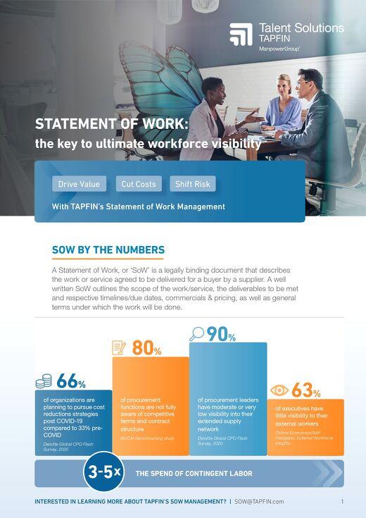 TAPFIN Statement of Work