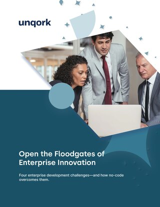 Open the Floodgates of Enterprise Innovation