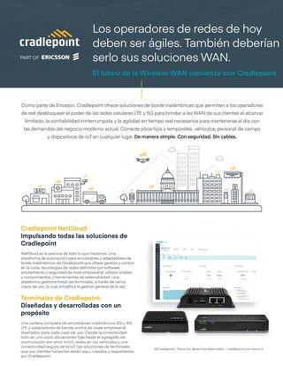 Network Operators Solution Brief - Spanish (LA)