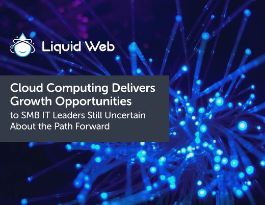 IT Leader's Tactical Guide to Rapid Growth Using Cloud Computing | Liquid Web
