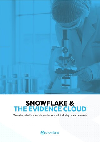 SNOWFLAKE & THE EVIDENCE CLOUD