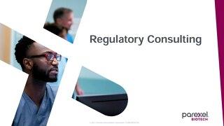 Regulatory Consulting Capabilities