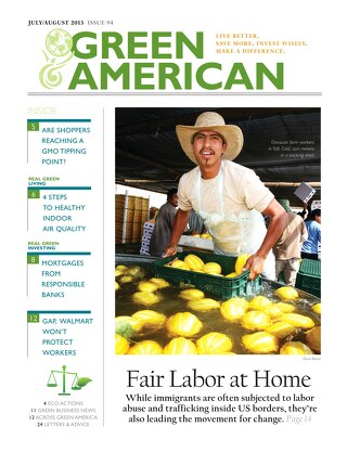 Green American #94, July-August 2013