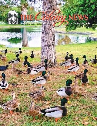 The Colony News November 2021