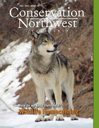 ConservationNW-Newsletter-Fall2013