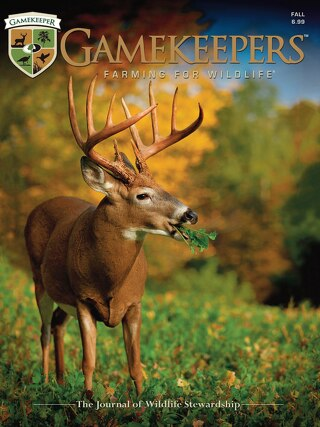 GameKeepers Fall 2013