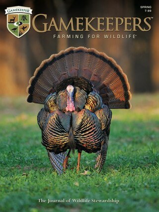 GameKeepers Spring 2014
