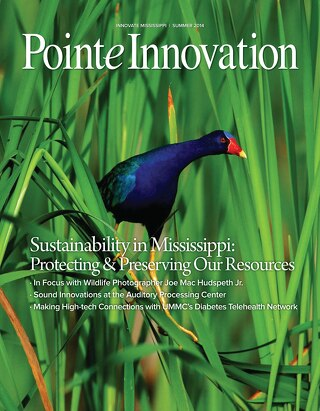 Pointe Innovation Magazine Summer 2014