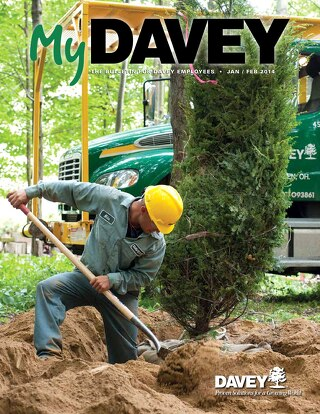 MyDavey Bulletin - January/February 2014