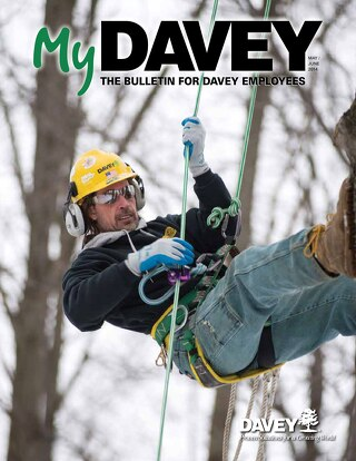 MyDavey Bulletin - May/June 2014