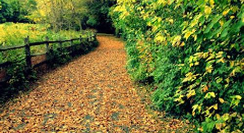 Lancaster and York, PA bike paths, don't skip them.
