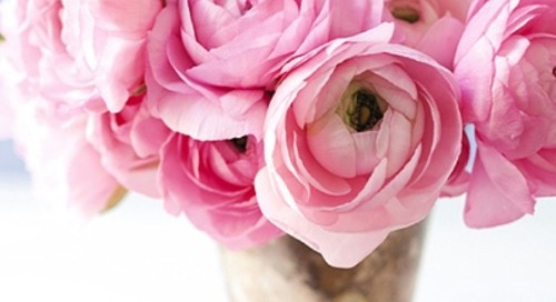 Some pretty floral inspiration on this Friday. Happy...